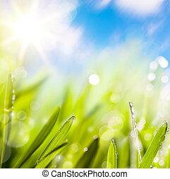요약, 의, 제자리표, 봄, 녹색의 배경