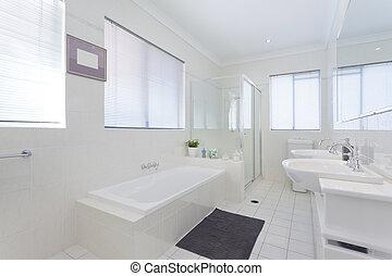 욕실, 현대