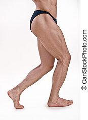 운동, 다리, 남성, muscled