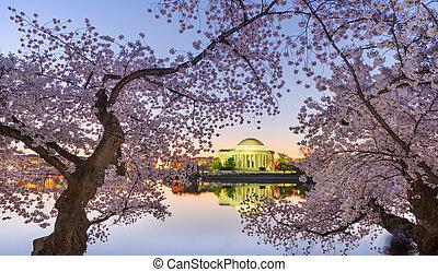 워싱톤, 대야, 기념물, jefferson, dc, 조수의