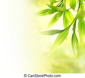 위의, 희미해지는, 녹색의 배경, 잎, 대나무, 떼어내다