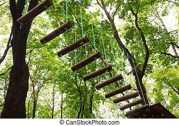 위험한, ropeway, 와, 한계, 에서, 로프, 공원, 나무, 와, 녹색은 떠난다