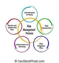위험, 관리, 과정
