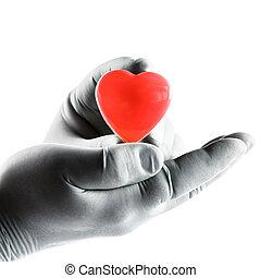 의사, 보유, heart., 건강 보험, 개념
