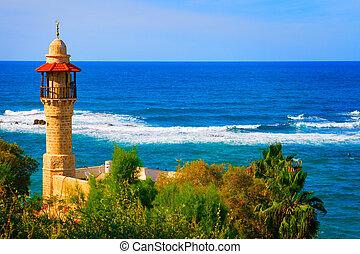 이스라엘, aviv를 말해라, 해안선, 조경술을 써서 녹화하다, 보이는 상태