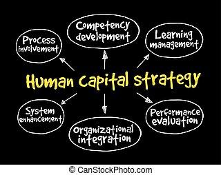 인력, 전략, 마음, 지도