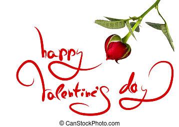 인사, 치고는, 발렌타인 데이, 와..., 심장, 에서, 장미, 고립된, 백색 위에서