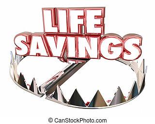 인생, 저금, 지불 준비를 하다, 돈, 부, 자원, 곰 덫, 3차원, 낱말