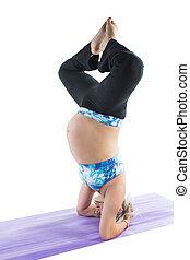 임신하고 있다, 적당, 여자, 통하고 있는, 요가, 와..., pilates, 자세, 백색 위에서, 배경., 그만큼, 개념, 의, 스포츠, 와..., 건강