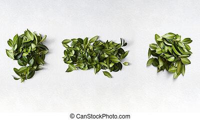 잎, 구두점, 녹색, 기호