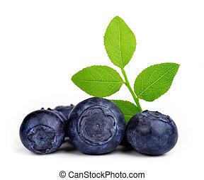 잎, 녹색, blueberries