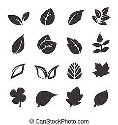 잎, 아이콘