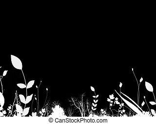 잎, 위의, 검정