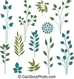 잎, elements.