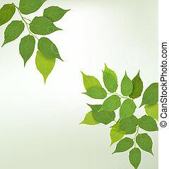 자연, 배경, 와, 녹색, 신선한, 잎, ., 벡터, illustration.