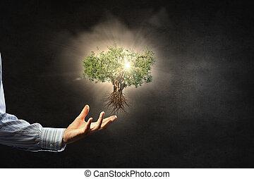 자연, 보호, 에서, 우리, 손