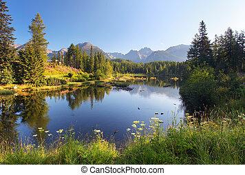 자연, 산, 장면, 와, 아름다운, 호수, 에서, 슬로바키아 공화국, tatra, -, strbske, pleso