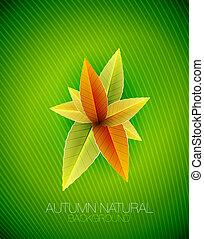 자연, 잎, 가을, 벡터, 배경, concept.