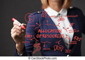 자원, 소녀, 사업, 표를 붙이는 사람, strategy., allocation, 발달, marketing...