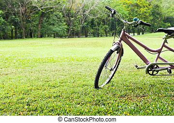 자전거, 공원안에