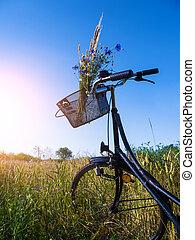 자전거, 에서, 조경술을 써서 녹화하다