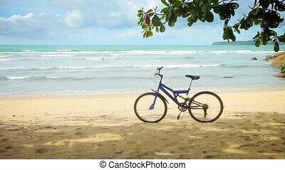 자전거, 주차하는, 통하고 있는, a, 열대 바닷가