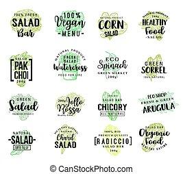 자체, 야채, 벡터, 샐러드, 밑그림