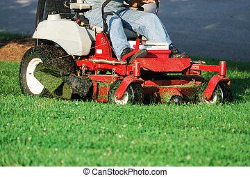 잔디밭 채초