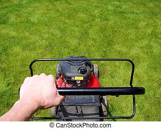 잔디 깎는 사람, 잔디