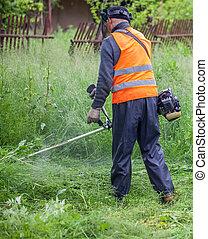 잔디, 풀을 깎는 것, 잔디 깎는 사람, 정원사