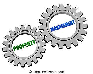 재산, 관리, 에서, 은, 회색, 은 설치한다