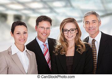 전문가, 그룹, 사업