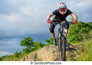 전문가, 자전거 타는 사람, 구, 그만큼, 자전거, 통하고 있는, 그만큼, 아름다운, 봄, 산, trail., 극치는