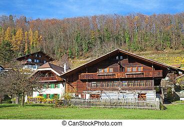 전통적인, 스위스어, 농장