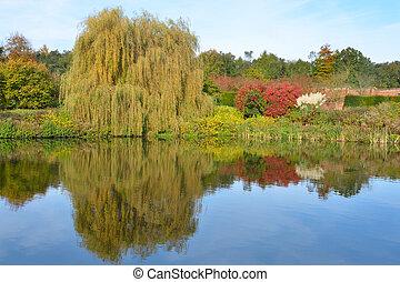 정원, 호수, 에서, 가을