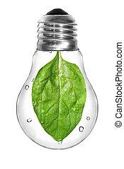 제자리표, 에너지, concept., 전구, 와, 녹색, 시금치, 잎, 내부, 고립된, 백색 위에서