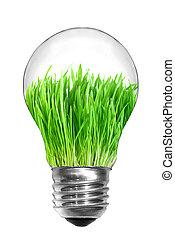 제자리표, 에너지, concept., 전구, 와, 녹색 잔디, 내부, 고립된, 백색 위에서