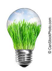 제자리표, 에너지, concept., 전구, 와, 여름, 목초지, 내부, 고립된, 백색 위에서