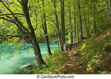 좁은 길, 걷기, 호수