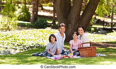 즐거운, 가족, 소풍가는 것, 공원안에