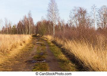 진흙투성이다, 길게 나부끼다, 완전히, 히스, 와..., 나무