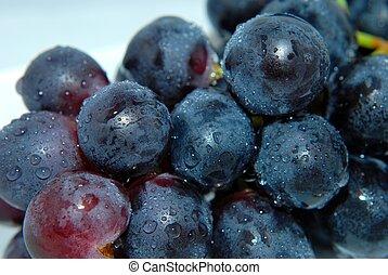 차고 끈적끈적하다, 과일