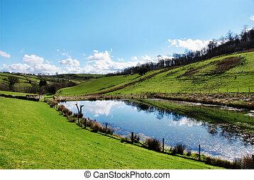 차분한, 연못, 에서, 회전, 영국 시골