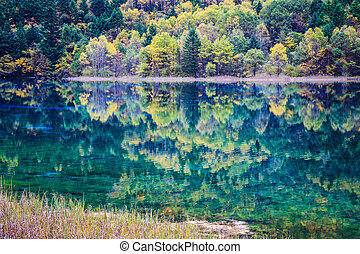 차분한, 호수, 에서, 가을