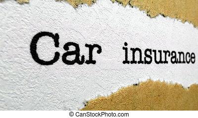 차 보험, 정책