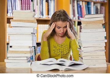책, 공부, 남자가 멋을 낸, 학생, 좌절시키는, 더미, 사이의