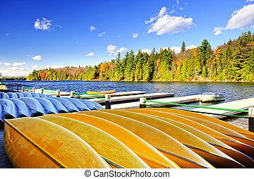 카누, 임대의, 통하고 있는, 가을, 호수