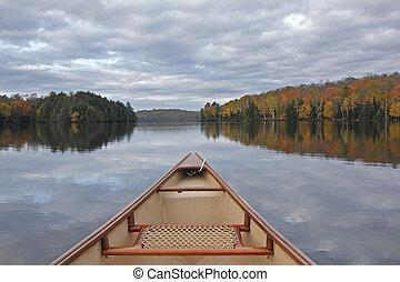 카누, 활, 통하고 있는, 자형의 것, 가을, 호수