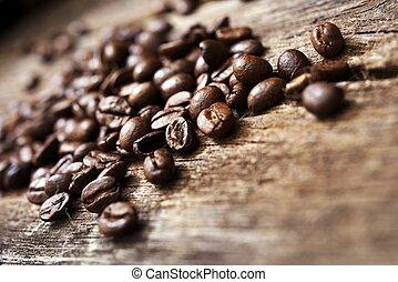커피, 나무