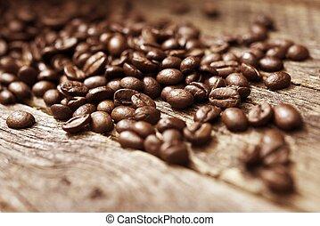 커피, 나무, 콩